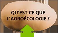 Réseau des initiatives agroécologique au Maroc